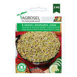 Germeni de broccoli